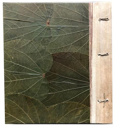 "Hawaiian Handmade matériaux naturels 80 photos album Honu Plumeria Hawaii 4/""x6/"""