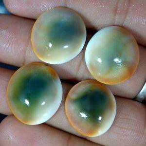 Best-Offer-Price-100-Natural-Shiva-Eye-Cabochon-Loose-Gemstone-Lot-Jgems2016