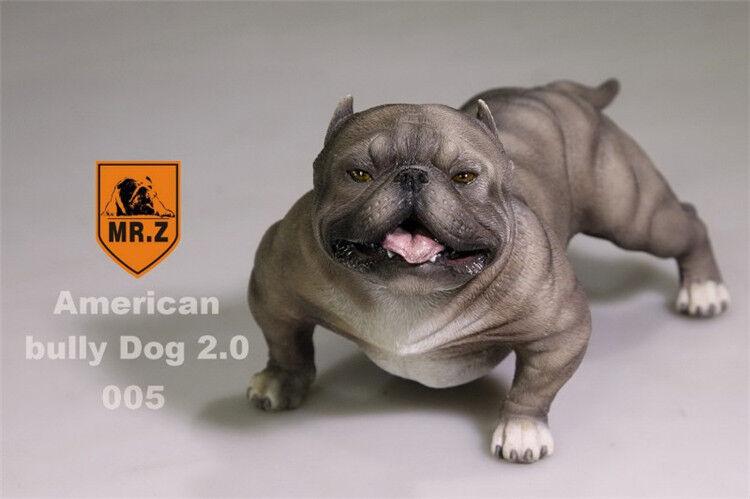 Mr. Z Animal Simulación 1 6 American Bully Dog 2.0 Pitbull para 12  Juguete Figura 005