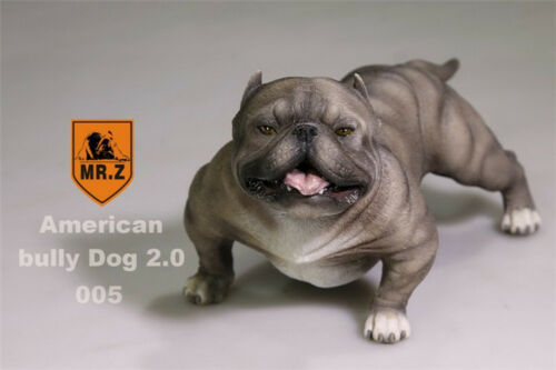 "Mr.Z Animal Simulation 1//6 American Bully Dog 2.0 Pitbull For 12/"" Figure 005 Toy"