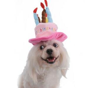 Image Is Loading Cute Pet Birthday Hat Adorable Dog Headwear For