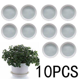 Plastic Plant Pot Succulent Tray Nusery Saucer Seed Water Drip Planter Holder