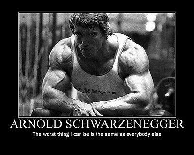 Arnold Schwarzenegger Olympia Bodybuilding Silk Canvas Poster 12x18 24x36 inch