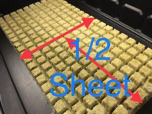 Grodan-1-034-AO-Rockwool-Starter-Plugs-Cubes-100-count-hydroponic-aquaponic-media