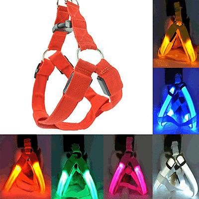 New LED Glow Flash Dog Belt Harness Leash Tether Pet Light-up Safety Collar