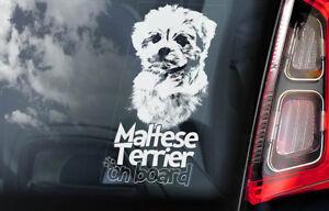 Maltes-Terrier-a-Bordo-Coche-Ventana-Pegatina-Leon-Perro-Signo-Forma-V01