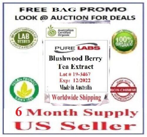 EBC 46 blushwood Berry Seed hylandia Polvo Extracto Orgánico 500 gramos