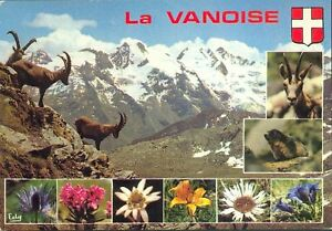 73-TARJETA-POSTAL-el-parque-de-la-Vanoise