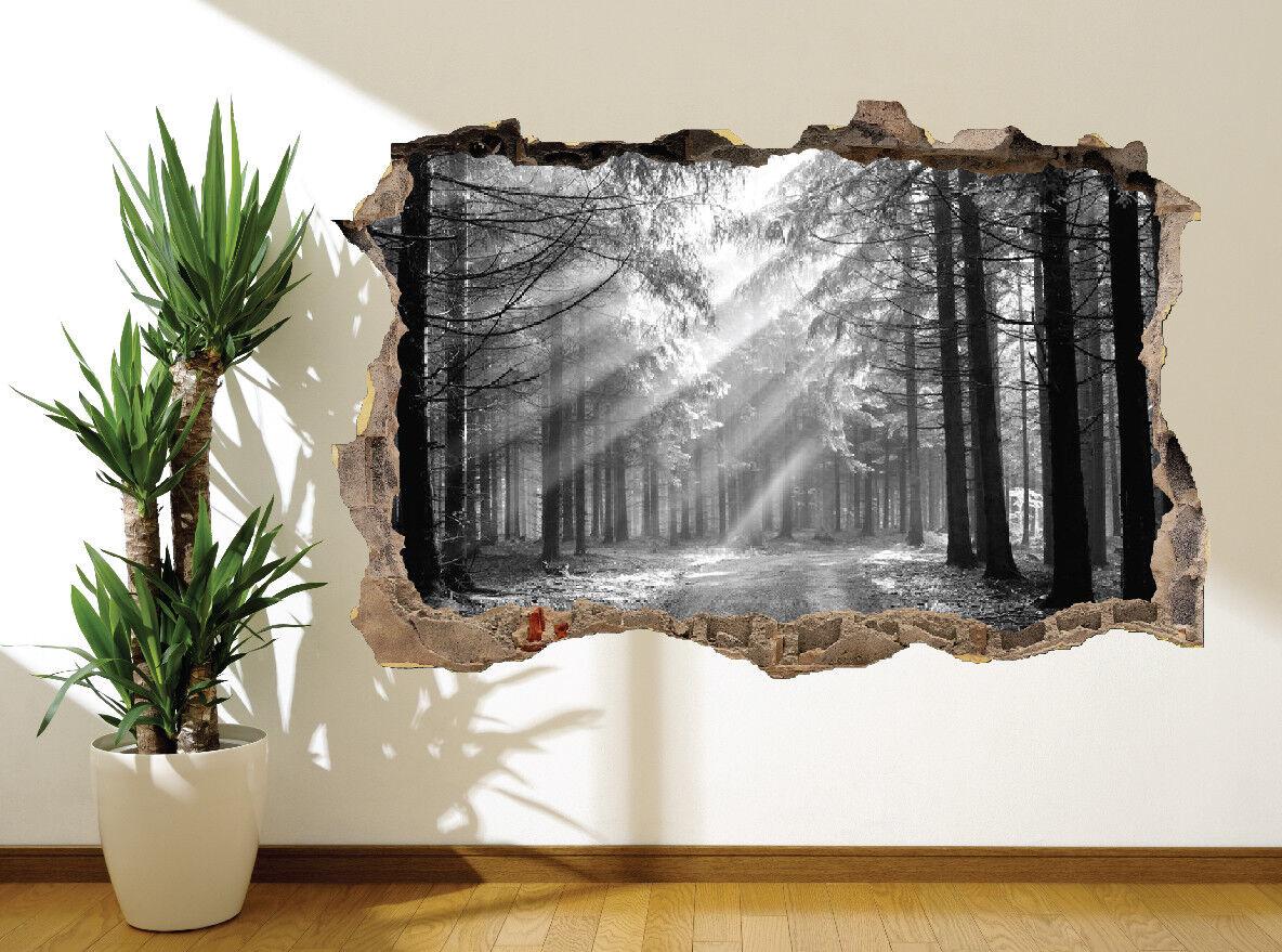 Forêt Nature Paysage Photo Autocollant Mural (7199901) (7199901) (7199901) Noir et Blanc | Simple D'utilisation  ae4592