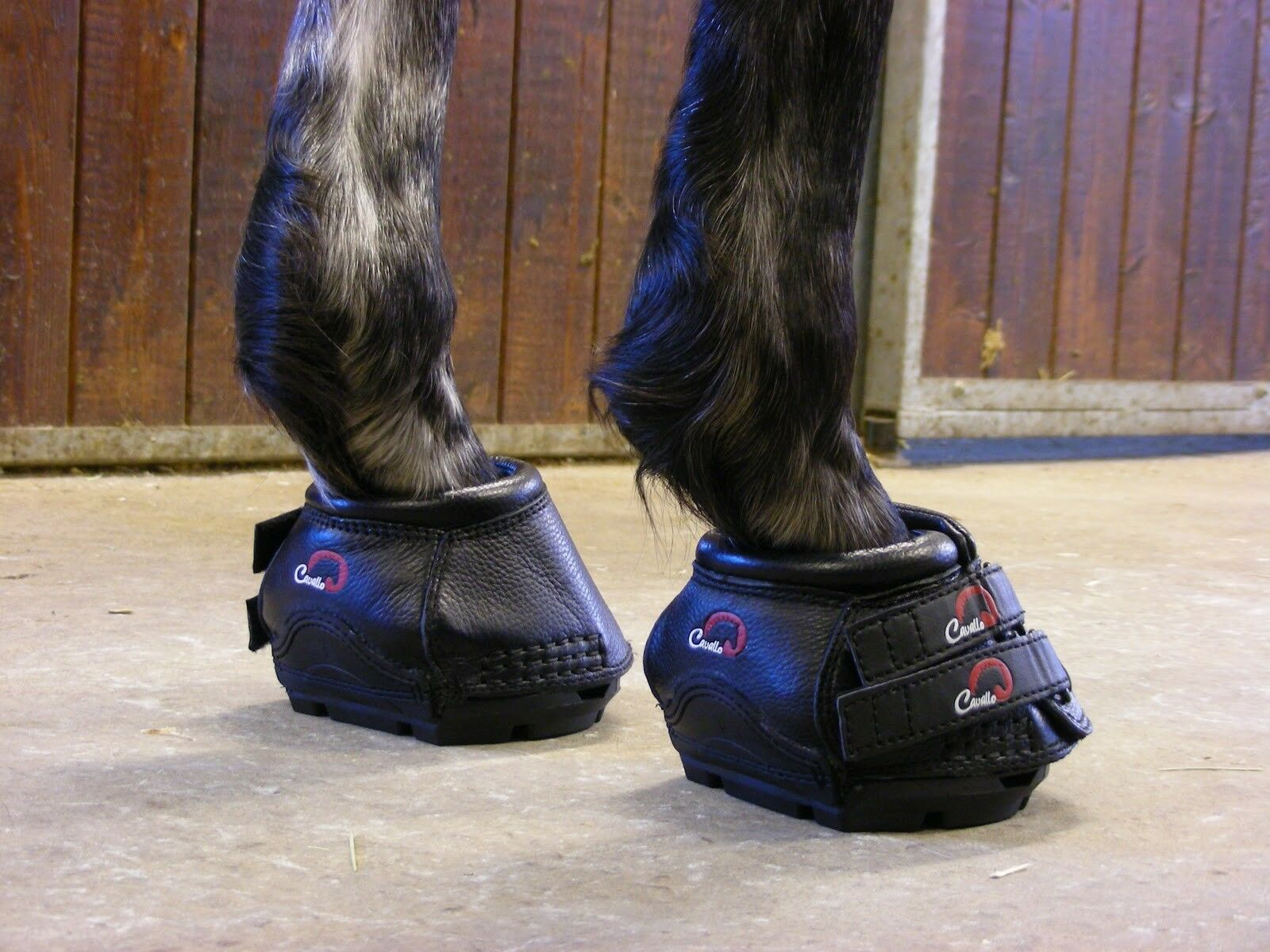 chaussures per cavallo Simple Hoof bottes chaussures for horses