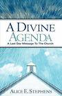 A Divine Agenda by Alice E Stephens (Paperback / softback, 2006)