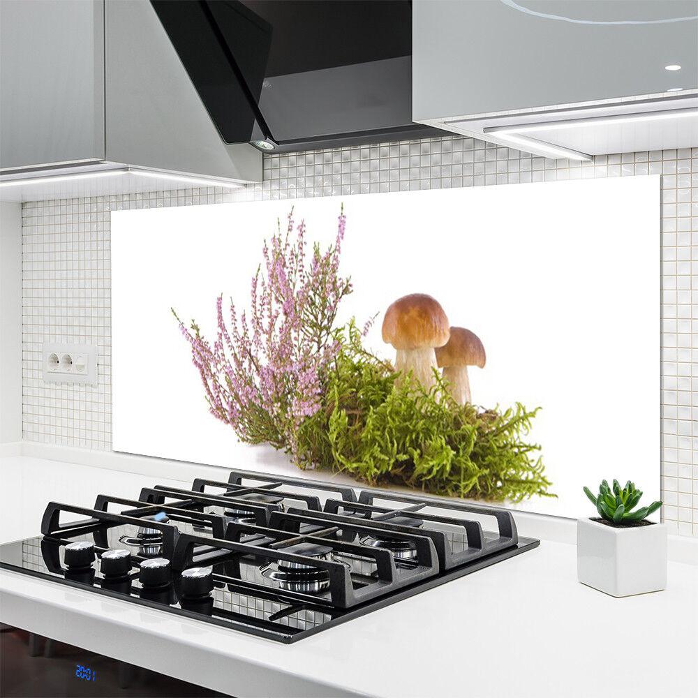 Cocina plano posterior de vidrio contra ESG protección contra vidrio salpicaduras 140x70cm hongos plantas d7cfe3