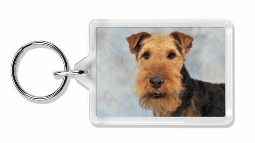 Welsh Terrier Dog Photo Keyring Animal Gift, AD-WT1K
