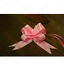 30mm Pull Bows Gift Wrapping Weddings Floristry Bow Ribbon ENGAGEMENT MARRIAGE