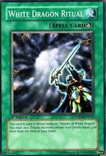 White Dragon Ritual 1st  DPKB  X 3 Yugioh Mint Common Cards