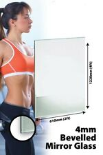 153 X 61cm 5Ft X 2Ft Bevelled Mirror Glass Home Gym Or Bathroom 4mm Thick