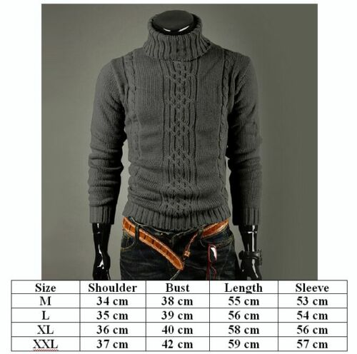 Men Winter Warm Knitted Polo Roll Turtle Neck Pullover Sweaters Slim Jumper Tops