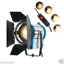 FS1000 1000W Dimmer built in Fresnel Tungsten Spot light Video+Bulb+Barndoor