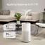 miniatura 3 - smartmi Particolato Filtro per salotto ampie camere d'aria PURIFICATORI