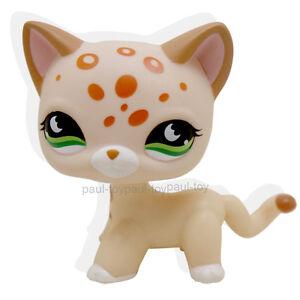Littlest Pet Shop Cats Uk