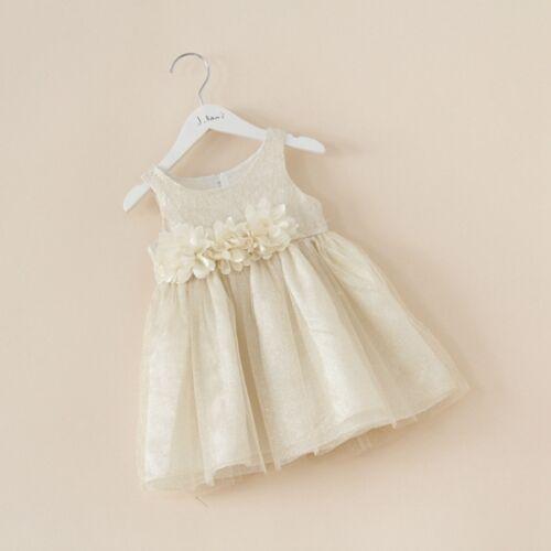 Toddler Girls Sleeveless Flowergirl Tulle Glittering Event Boutique Dress Size 5