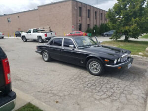 1984 Jaguar XJ6 still purring