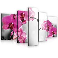SET (5 teilig) Leinwandbild Wandbild Bild Orchidee Blumen Kunst Rosa 3FX10155S4A