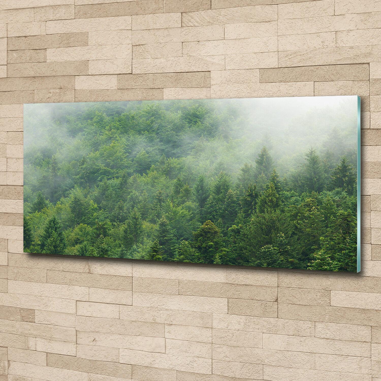 Glas-Bild Wandbilder Druck auf Glas 125x50 Blaumen & Pflanzen Mysteriöser Wald
