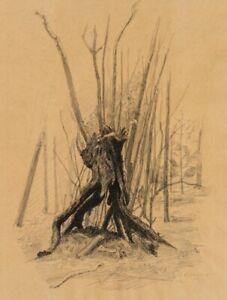 Ausgehoehlter-Baumstumpf-Naturstudie-im-Waldstueck-19-Jahrhundert-Zchng