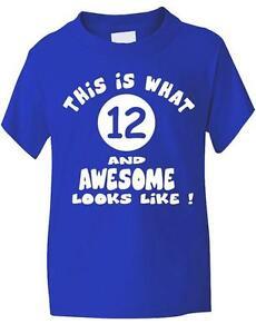 12th-Decima-segunda-cumpleanos-T-Shirt-Nina-Nino-Unisex-Regalo-Edad-1-13