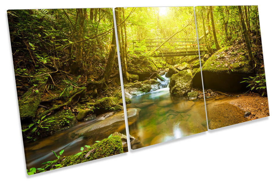 Grün Forest River Bridge  CANVAS WALL ART TRIPLE Print Picture