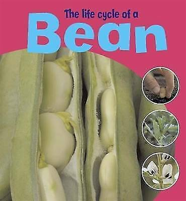 The Life Cycle Of A Bean by Thomson, Ruth