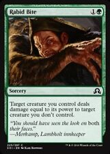 4x 4 x Rabid Bite x4 Common Shadows over Innistrad MTG UNPLAYED ~~~