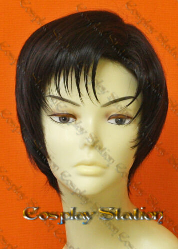Sailor Moon Prince Endymion Custom Styled Wig_commission662