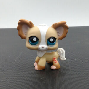 LPS-Hasbro-Littlest-Pet-Shop-1082-Chihuahua-Brown-Dog-Birthday-Puppy-Gift-Xmas