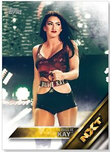 Le Funks #165 WWE puis maintenant Forever 2016 TOPPS TRADING CARD