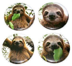 SUPER-CUTE-SLOTHS-Set-of-4-Large-FRIDGE-MAGNETS-sloth
