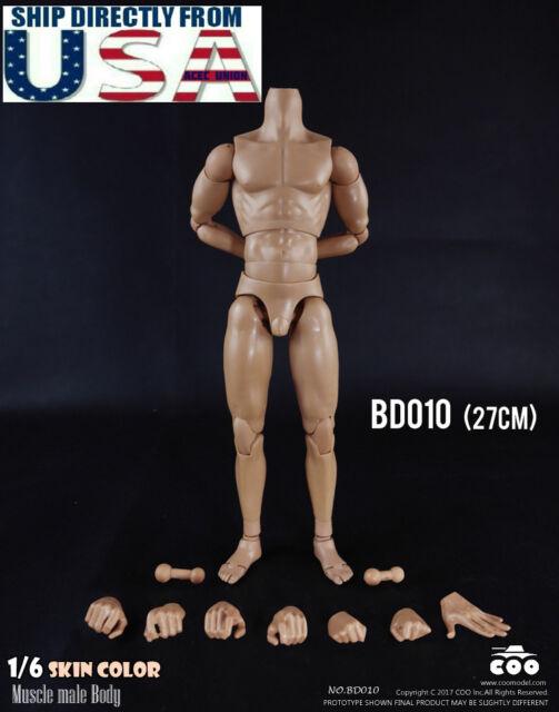 COOMODEL 1//6 Standard Muscle Arm Male Body BD010 TALL For TTM18 TTM19 ❶USA❶