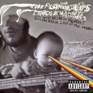 The-Flaming-Lips-034-The-intestino-side-of-the-Moon-034-CD-NUOVO