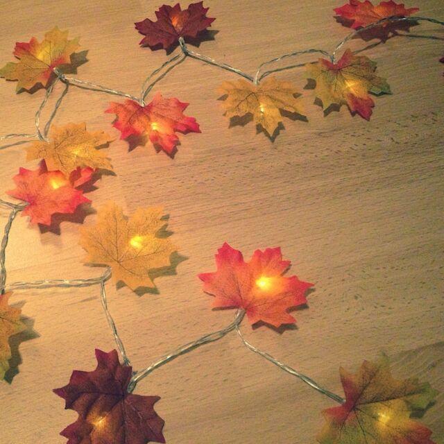 Autumn Leaves Fairy Lights / LED Battery Fall Leaf Garland *Garden Wedding*