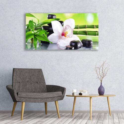 Glasbilder Wandbild Druck auf Glas 120x60 Bambusrohre Blume Steine Pflanzen
