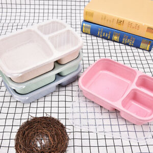 Bento Lunch Picnic Food Container