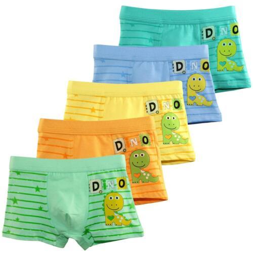 Booph Boys Underwear Dinosaur Boys/'Boxer Briefs Little Toddler Cotton Underwear