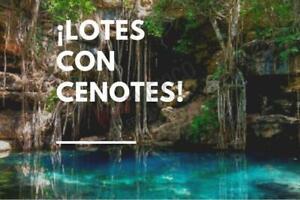 Lotes en venta con cenote privado en la propiedad, Municipio de Benito Juárez, Quintana Roo