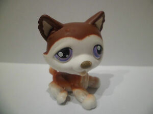 LPS LITTLEST PETSHOP PET SHOP dog chien husky 427
