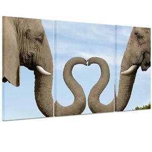 Large heart elephant trunk unframed hd canvas print wall for Elephant heart trunk