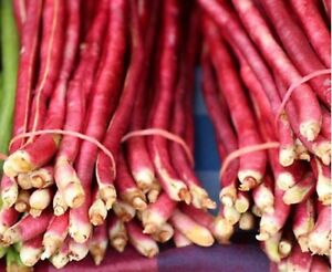Bean-Pole-Yard-Long-Red-Noodle-Non-GMO-Heirloom-Vegetable-Seeds-Sow-No-GMO