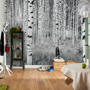 XXL4 023 Komar Scenics 2 Woods Multicoloured Komar Wall Mural