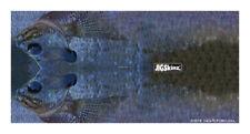 New JigSkinz Real Life Yellow Sunfish Mixed Pack Small Med Lrg XL 4pk JZRLSFY-MP