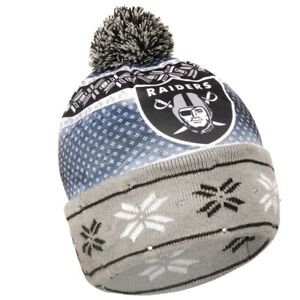 faccedd620 Image is loading Oakland-Raiders-Forever-Collectibles-NFL-UGLY-Light-Up-